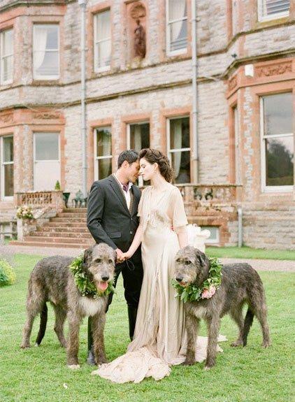 hochzeit_mit_hund1_wedding_.with_dog