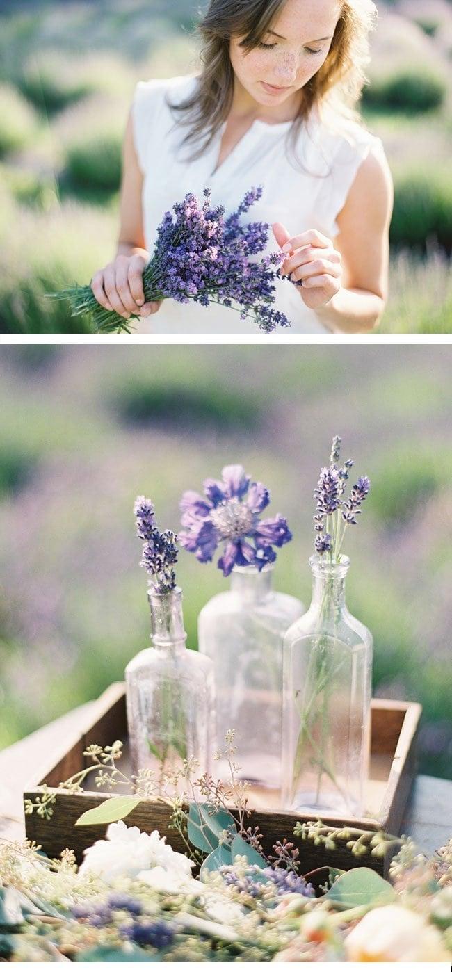lavendershoot8