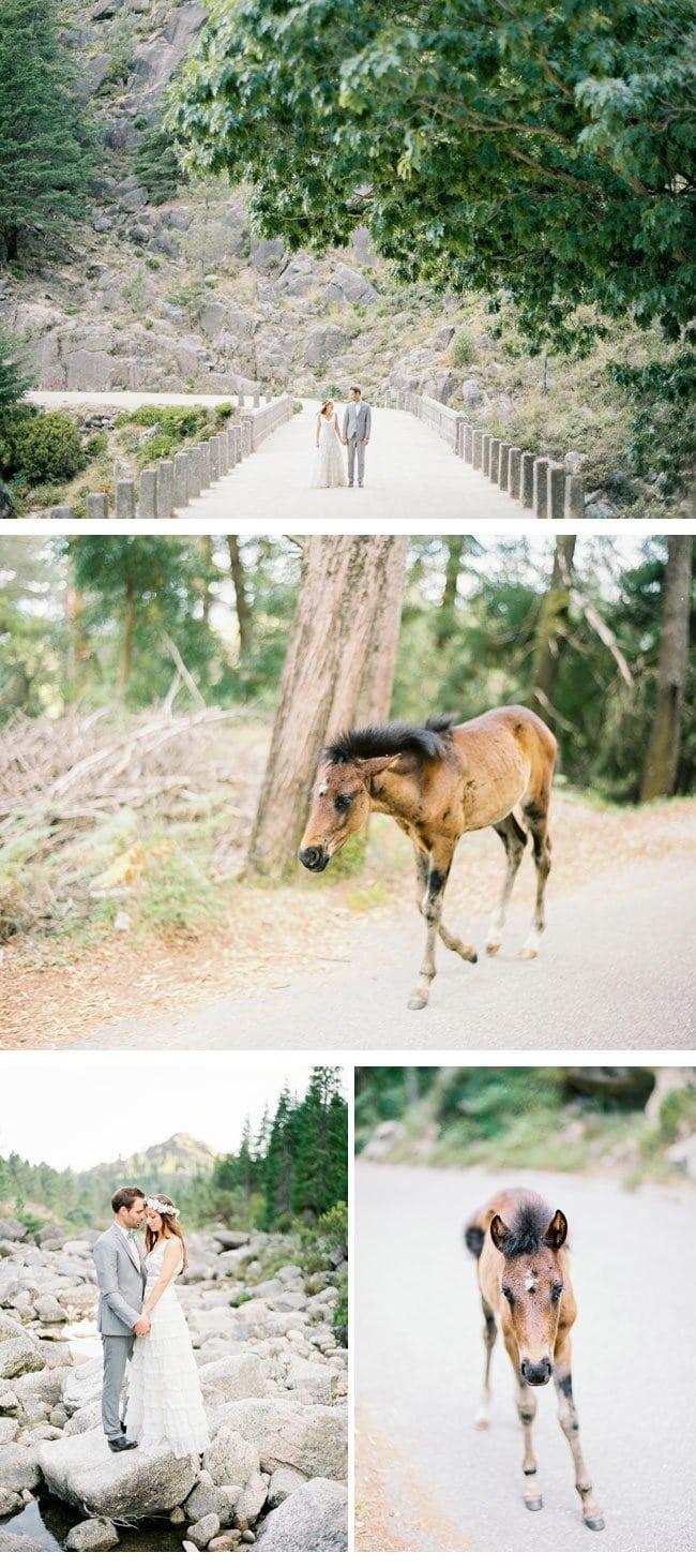 gigi eric10-after wedding shoot