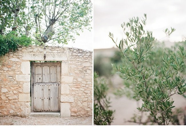 lavender olive grove provence wedding shoot 0002