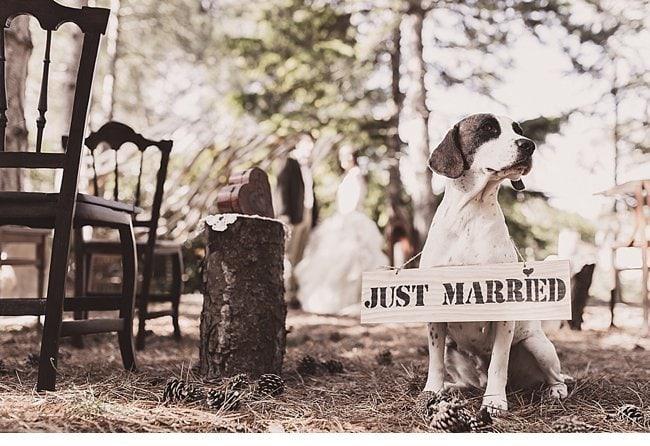 mediterranean forest wedding shoot 0004