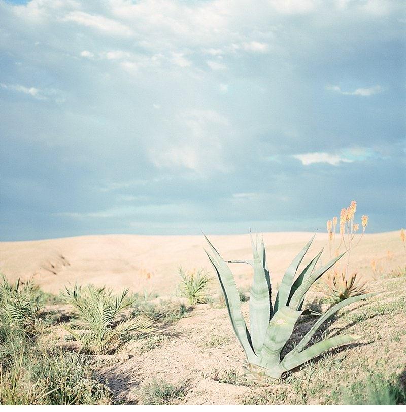 desert morocco inspirationshoot 0057