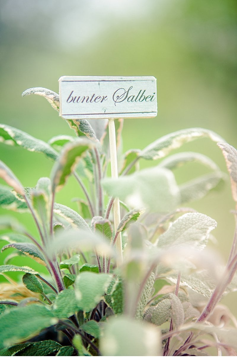 vier braeute herb garden wedding inspiration 0009
