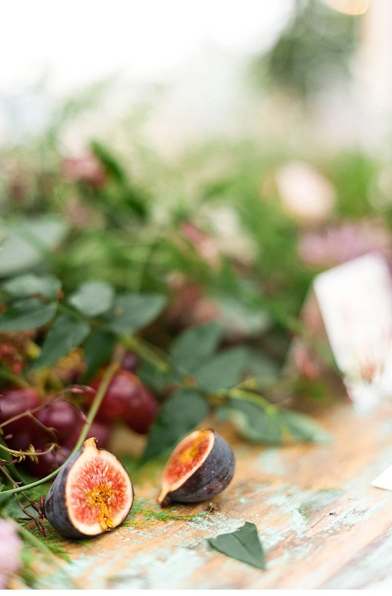 botanicals berries blumenshoot 0010