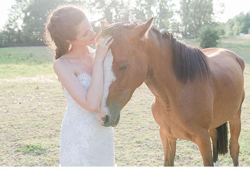 wedding-lavender-shoot_0028