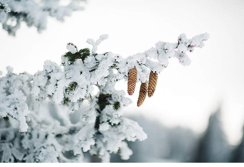 winterbraut-inspirationen_0019