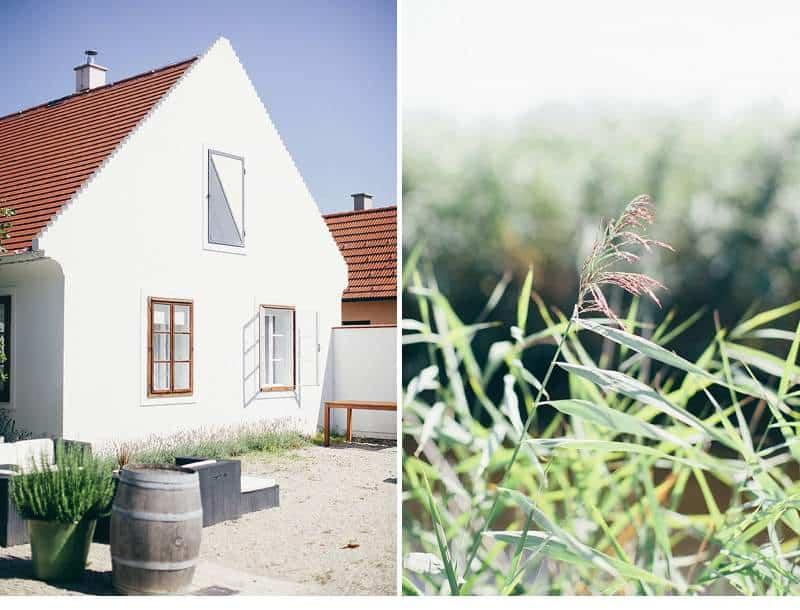 kathrin-marc-sommerhochzeit-gut-purbach_0001