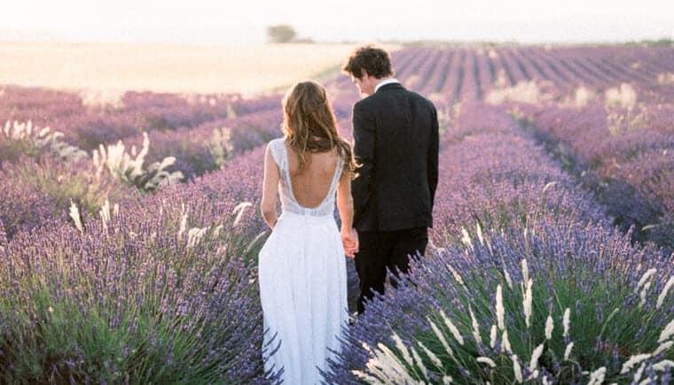 Bezaubernde Lavendelfelder in der Provence